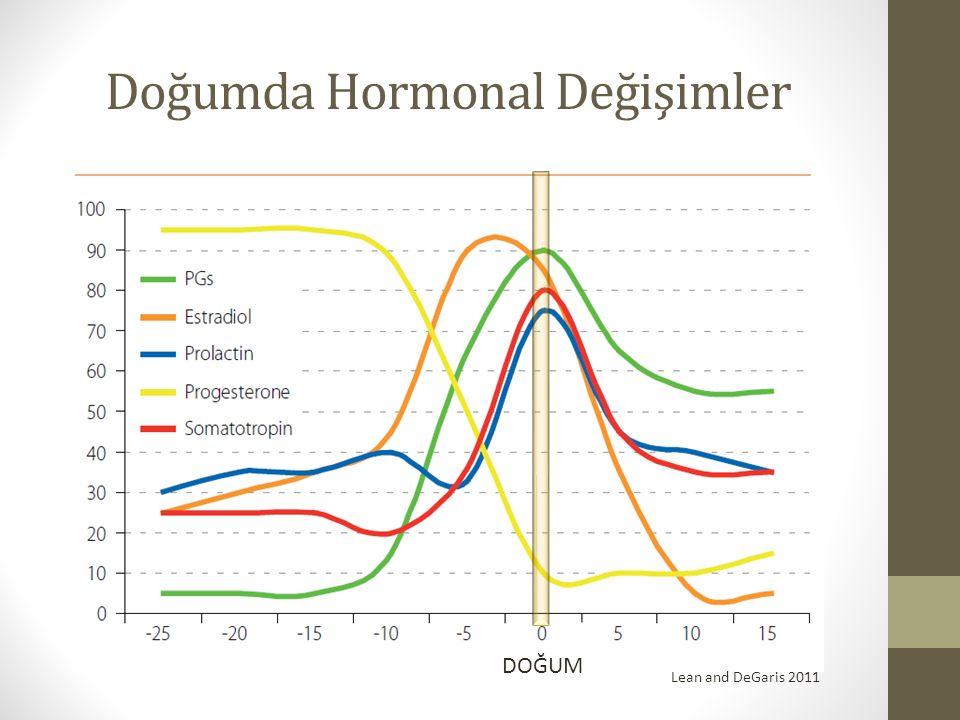 Doğumda Hormonal Değişimler