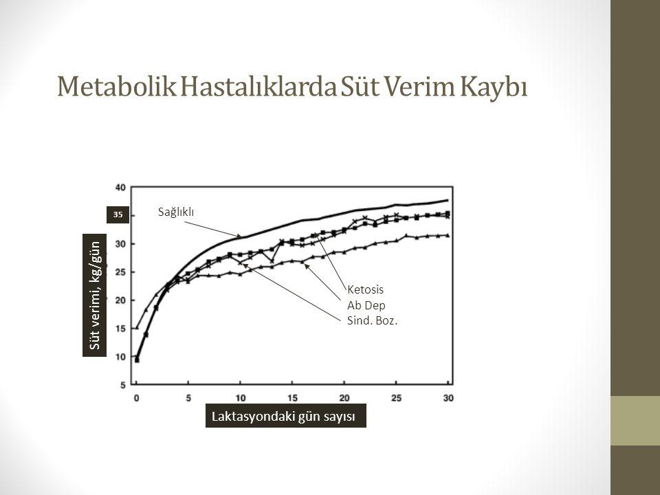 Metabolik Hastalıklarda Süt Verim Kaybı