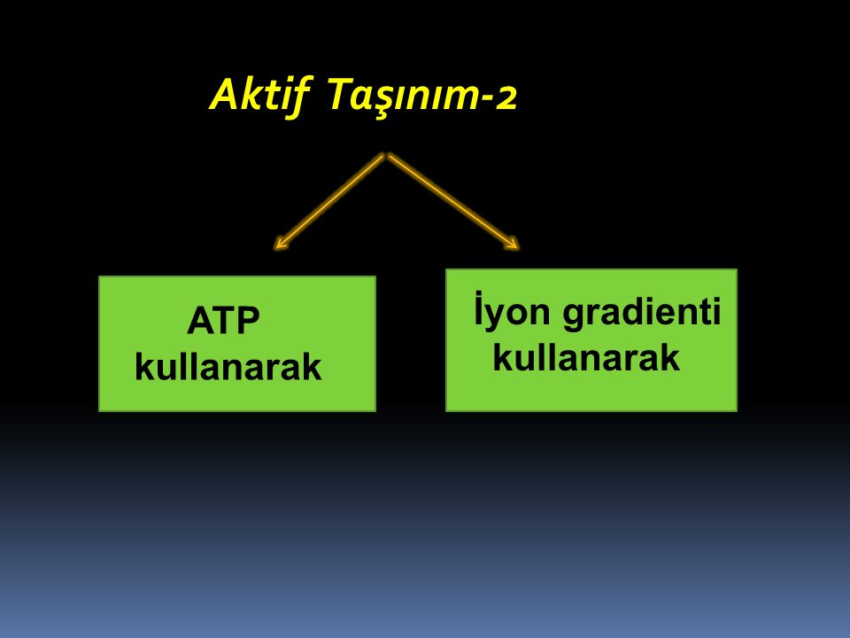 ATP kullanarak İyon gradienti