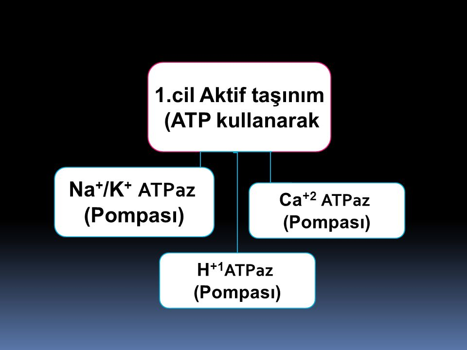 1.cil Aktif taşınım (ATP kullanarak) Na+/K+ ATPaz (Pompası) Ca+2 ATPaz