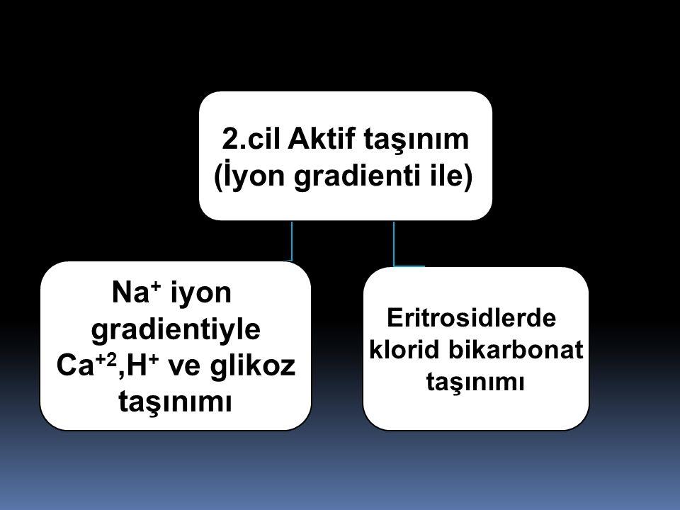 Na+ iyon gradientiyle Ca+2,H+ ve glikoz taşınımı 2.cil Aktif taşınım