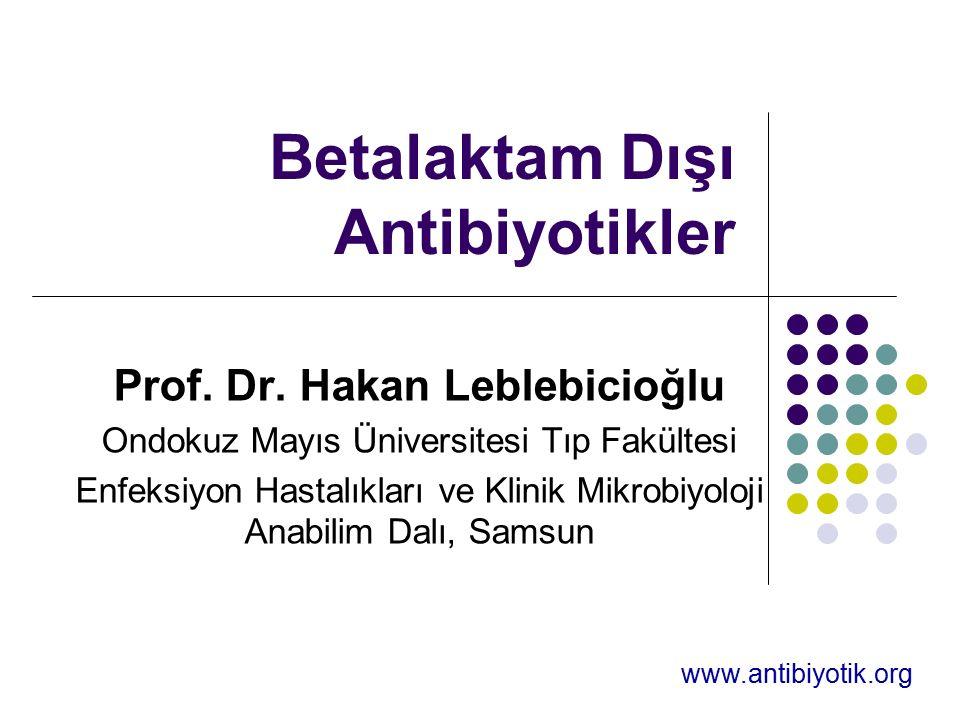 Betalaktam Dışı Antibiyotikler