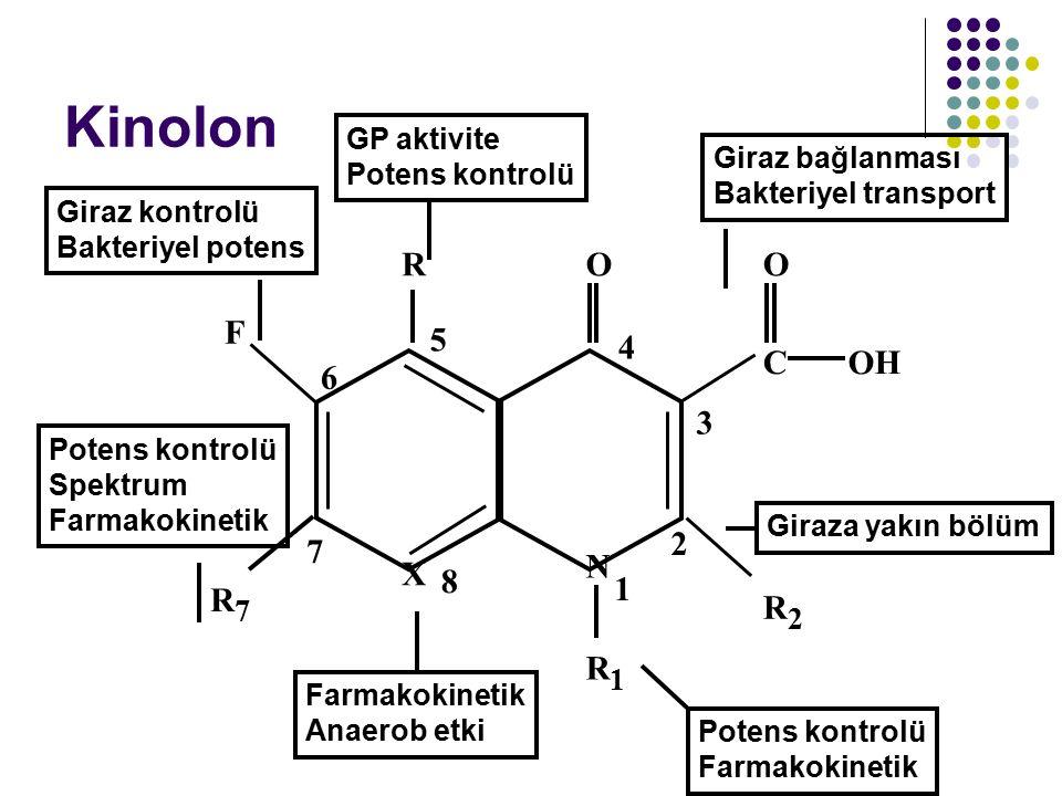Kinolon C OH O F R N 5 4 3 2 1 6 7 X 8 R7 R1 R2 GP aktivite