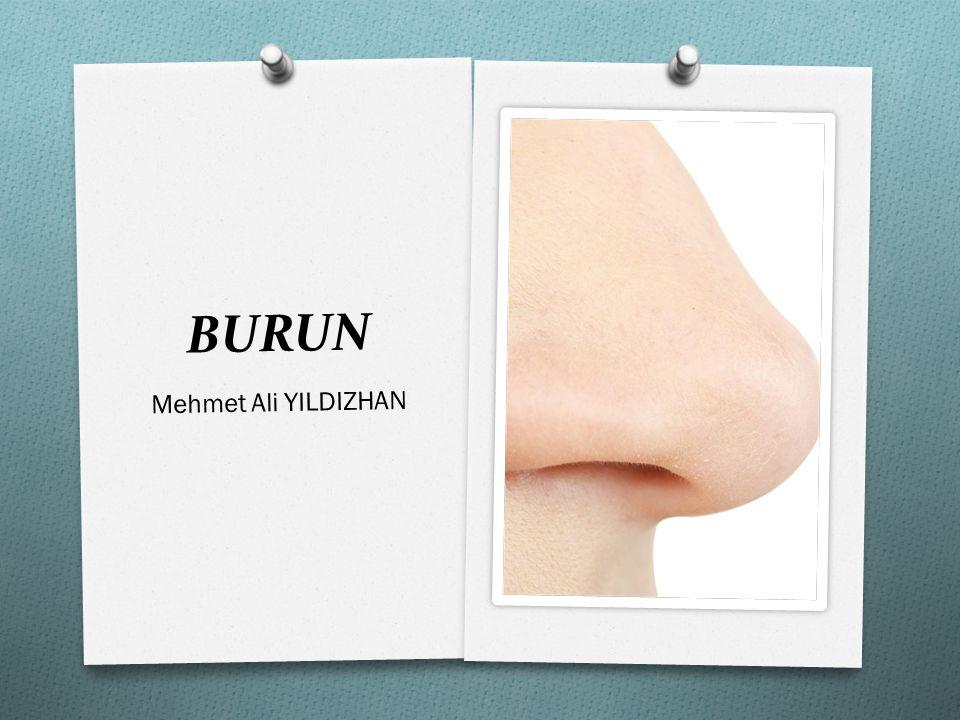 BURUN Mehmet Ali YILDIZHAN