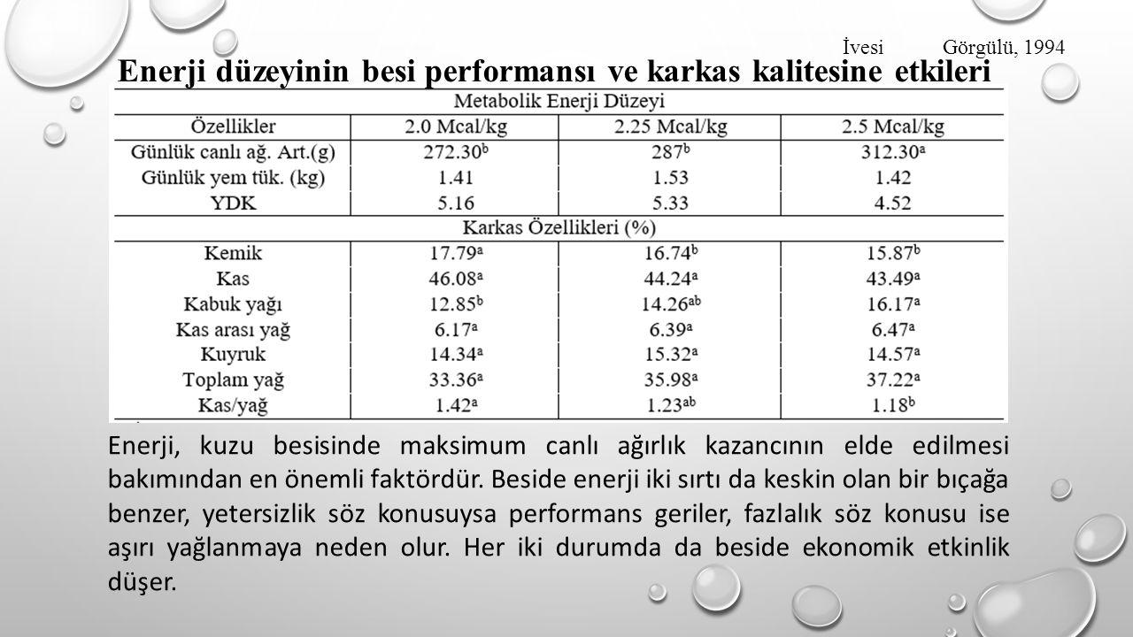 Enerji düzeyinin besi performansı ve karkas kalitesine etkileri
