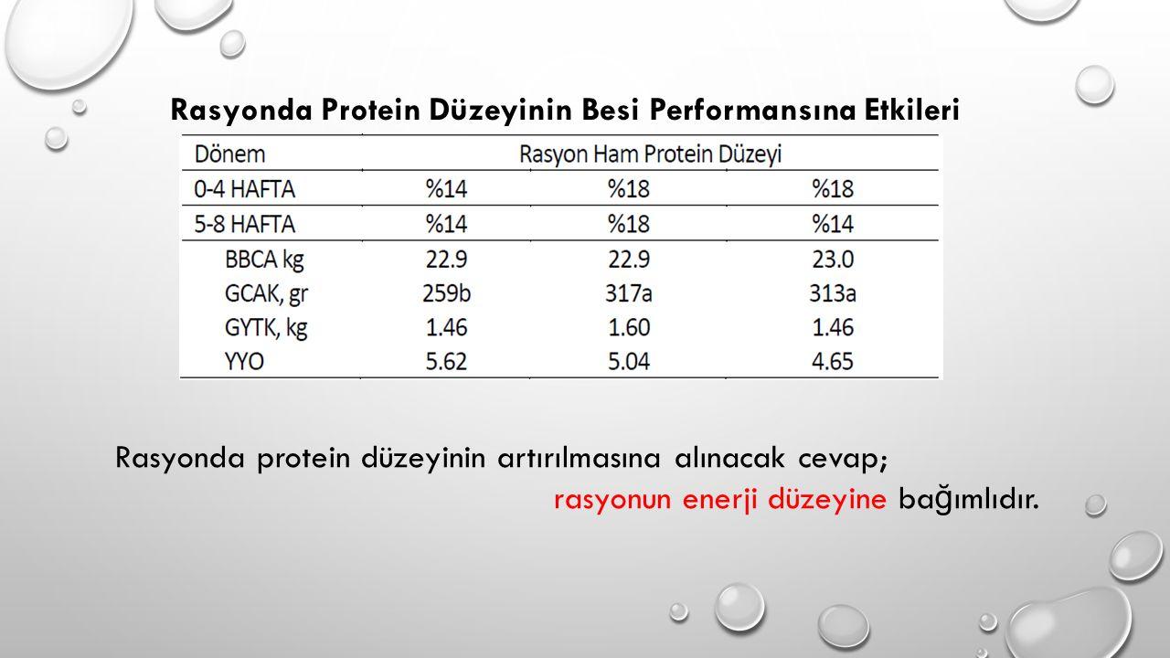Rasyonda Protein Düzeyinin Besi Performansına Etkileri
