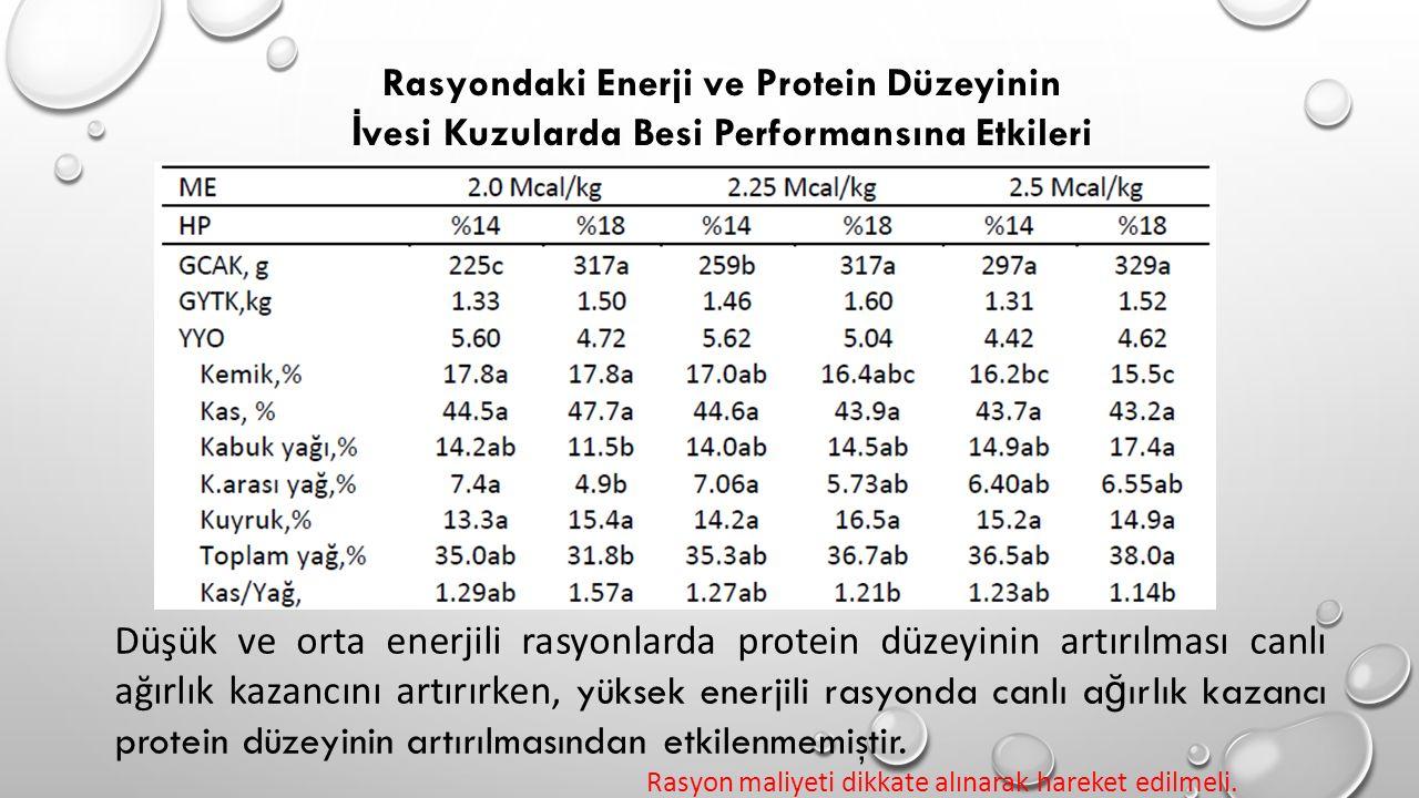 Rasyondaki Enerji ve Protein Düzeyinin
