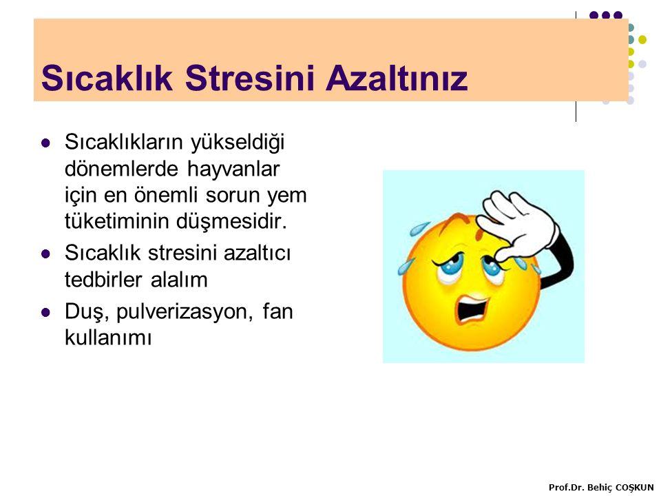 Sıcaklık Stresini Azaltınız
