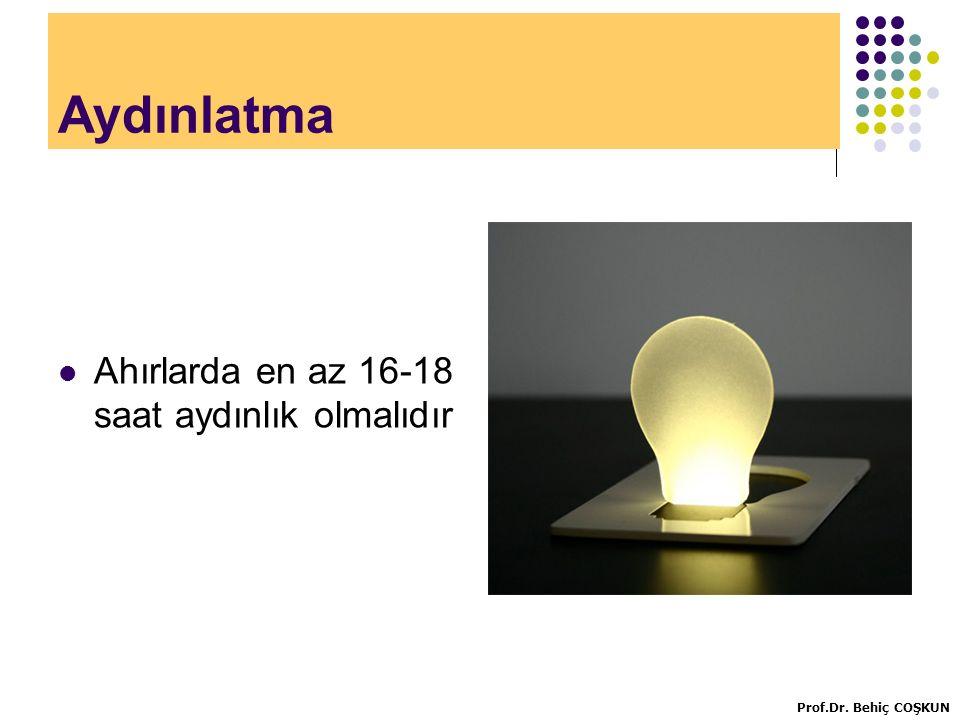Aydınlatma Ahırlarda en az 16-18 saat aydınlık olmalıdır