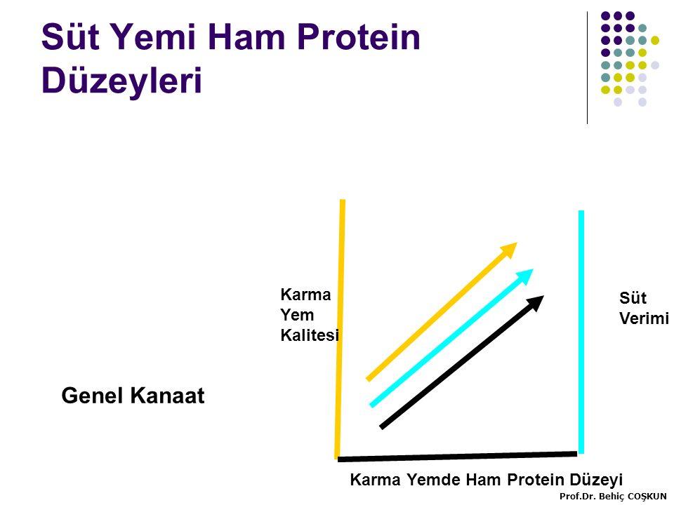 Süt Yemi Ham Protein Düzeyleri