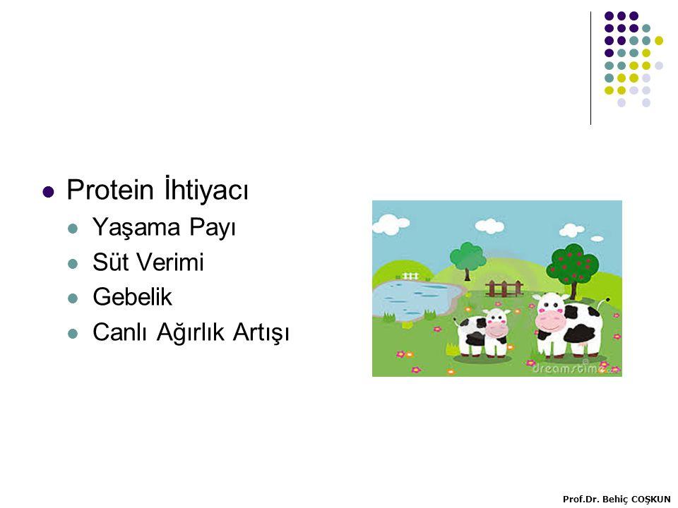 Protein İhtiyacı Yaşama Payı Süt Verimi Gebelik Canlı Ağırlık Artışı