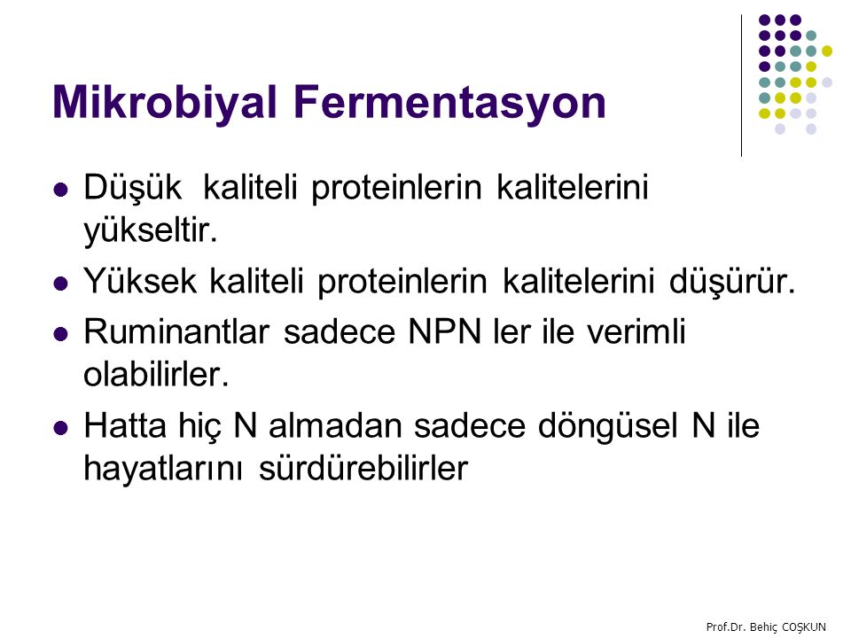 Mikrobiyal Fermentasyon