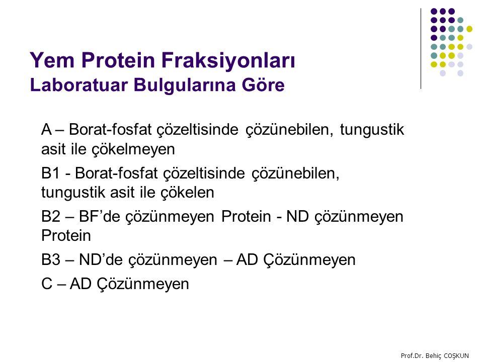 Yem Protein Fraksiyonları Laboratuar Bulgularına Göre