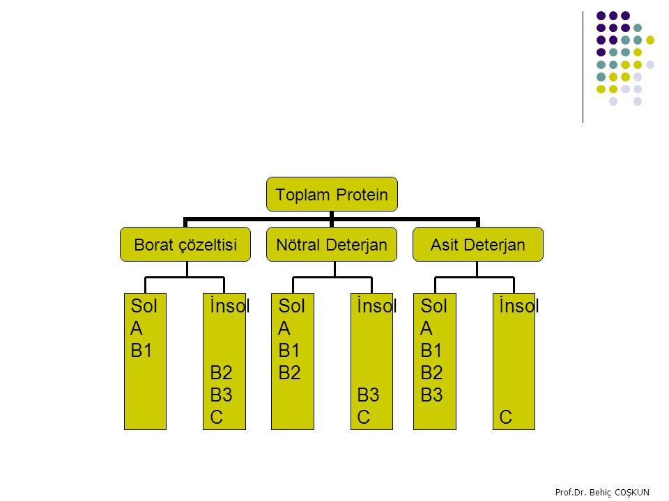 Sol A B1 İnsol B2 B3 C Sol A B1 B2 İnsol B3 C Sol A B1 B2 B3 İnsol C
