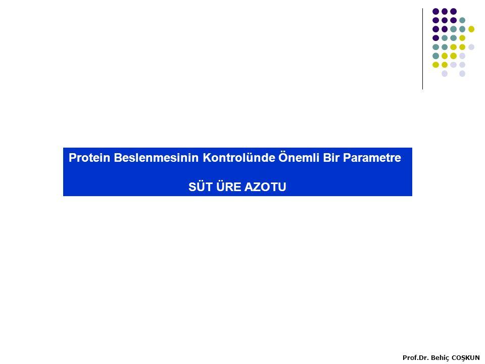 Protein Beslenmesinin Kontrolünde Önemli Bir Parametre