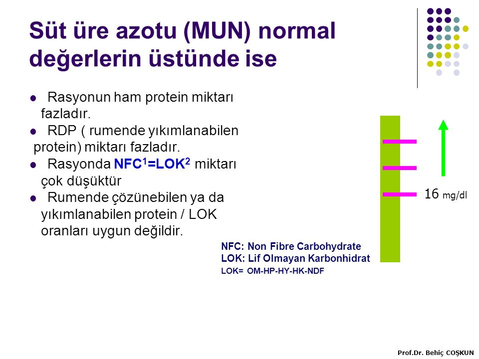 Süt üre azotu (MUN) normal değerlerin üstünde ise