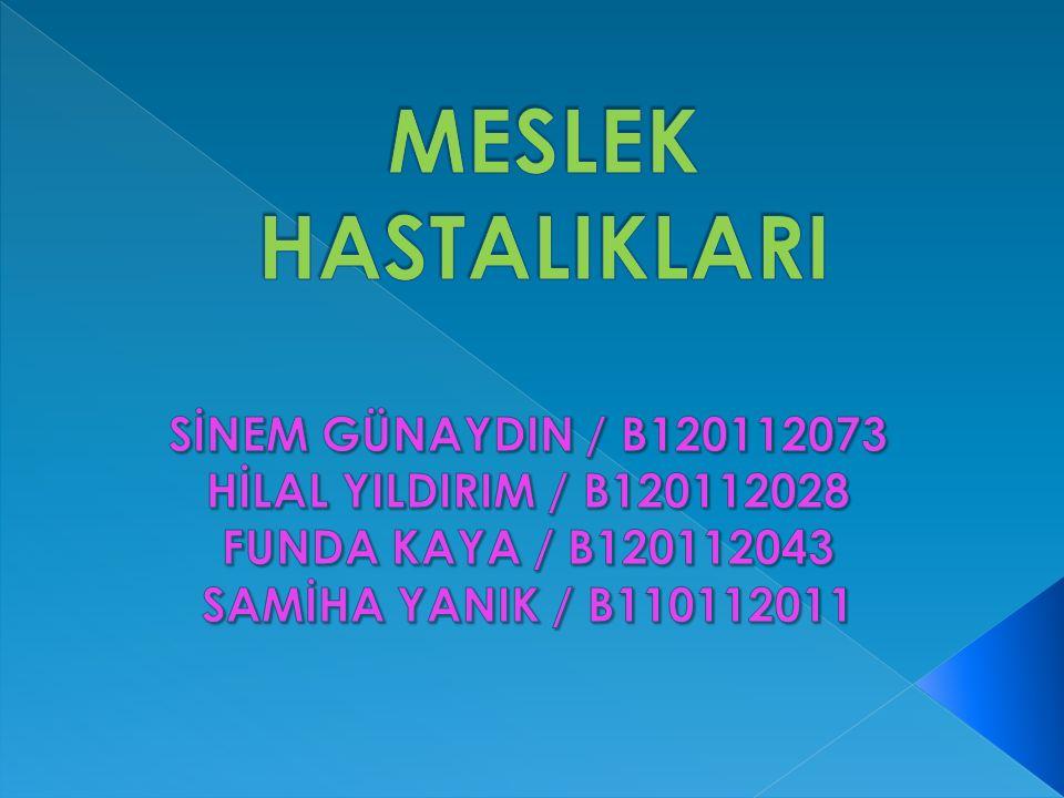 MESLEK HASTALIKLARI SİNEM GÜNAYDIN / B120112073