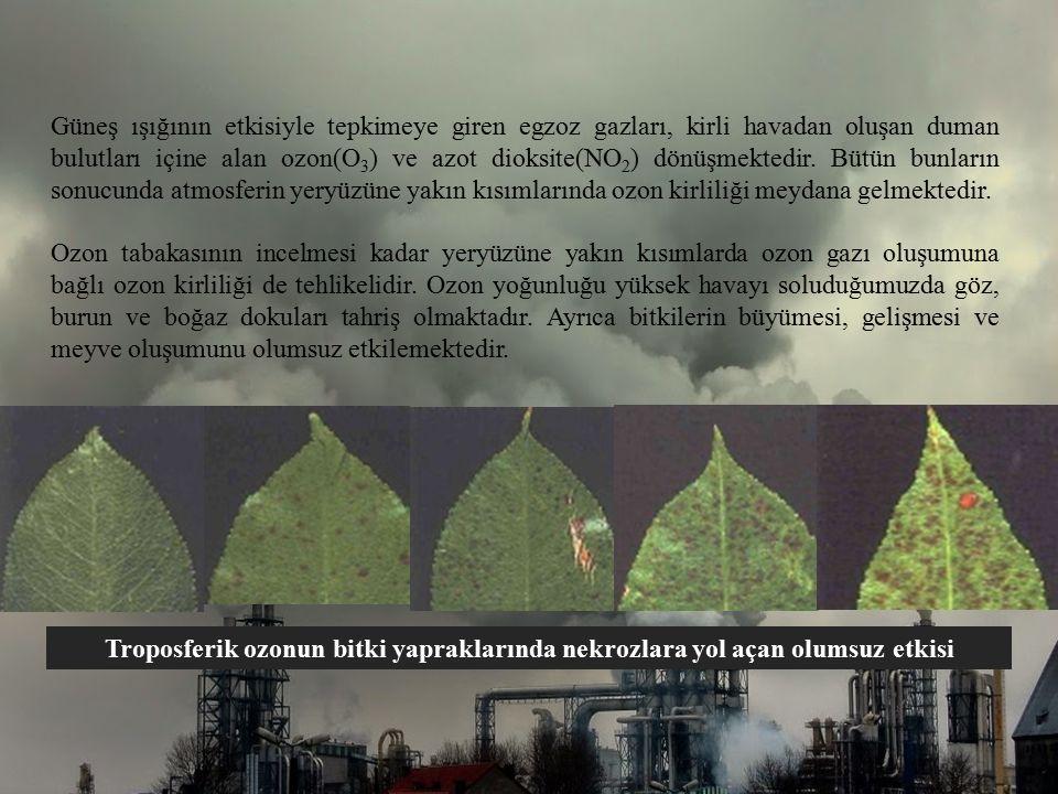 Güneş ışığının etkisiyle tepkimeye giren egzoz gazları, kirli havadan oluşan duman bulutları içine alan ozon(O3) ve azot dioksite(NO2) dönüşmektedir. Bütün bunların sonucunda atmosferin yeryüzüne yakın kısımlarında ozon kirliliği meydana gelmektedir.