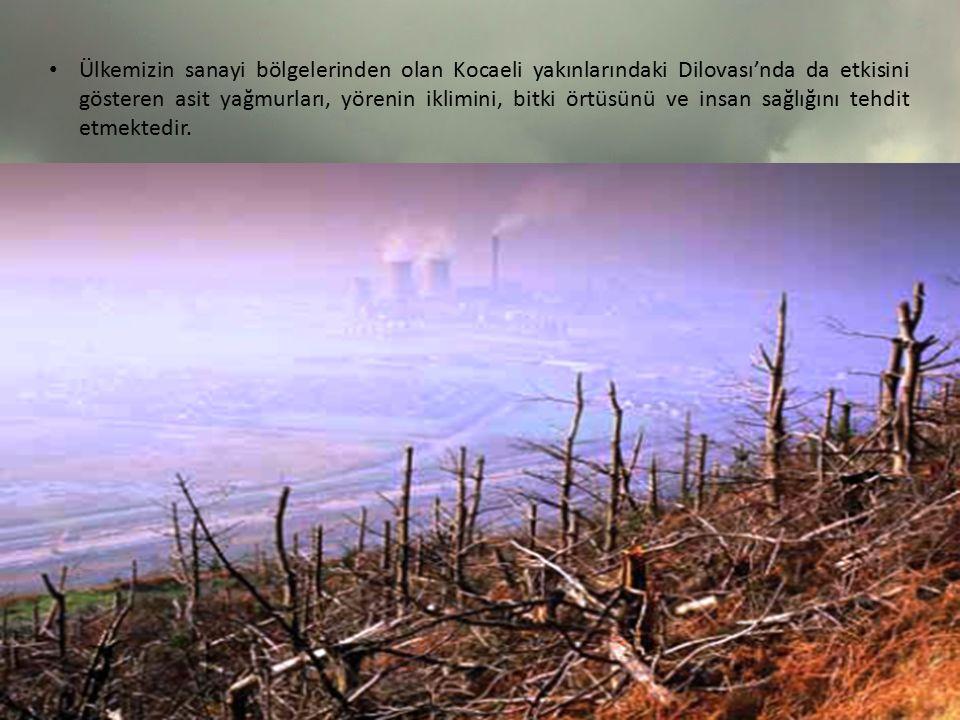 Ülkemizin sanayi bölgelerinden olan Kocaeli yakınlarındaki Dilovası'nda da etkisini gösteren asit yağmurları, yörenin iklimini, bitki örtüsünü ve insan sağlığını tehdit etmektedir.