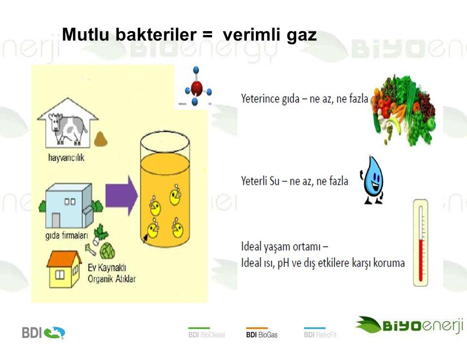 Mutlu bakteriler = verimli gaz