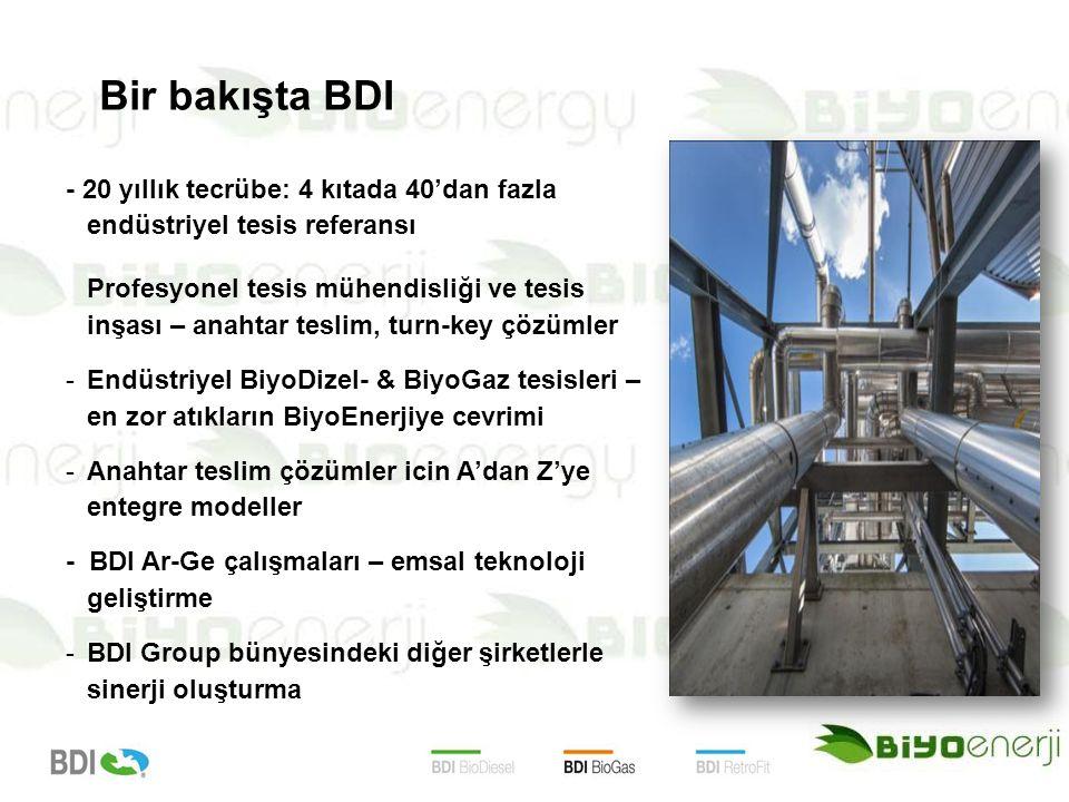 Bir bakışta BDI - 20 yıllık tecrübe: 4 kıtada 40'dan fazla endüstriyel tesis referansı.