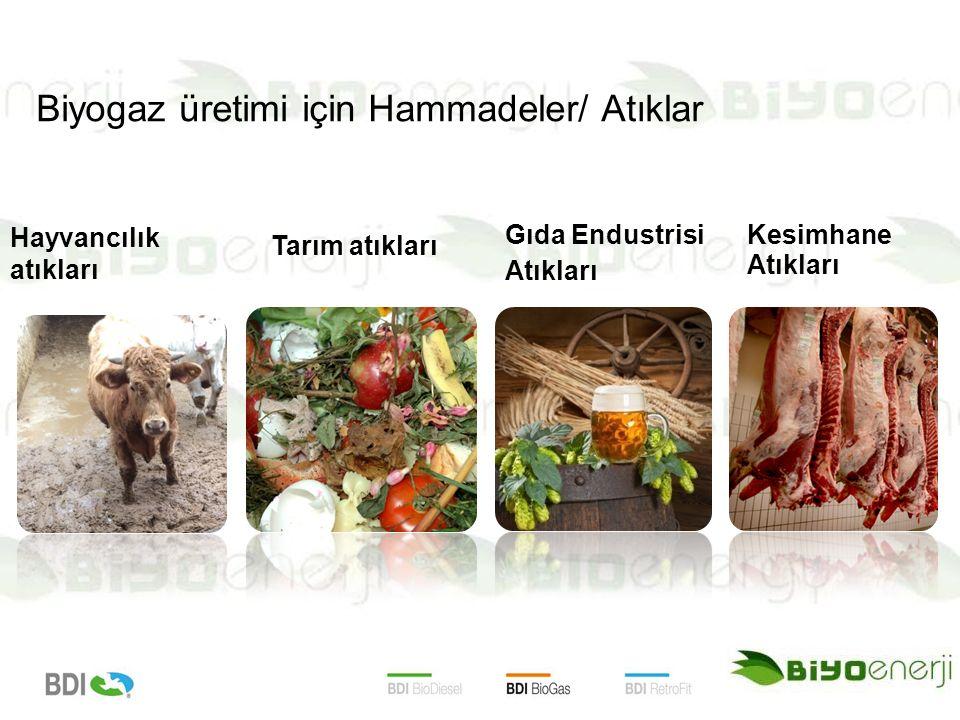 Biyogaz üretimi için Hammadeler/ Atıklar
