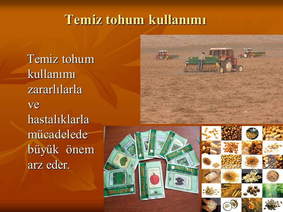 Temiz tohum kullanımı Temiz tohum kullanımı zararlılarla ve hastalıklarla mücadelede büyük önem arz eder.