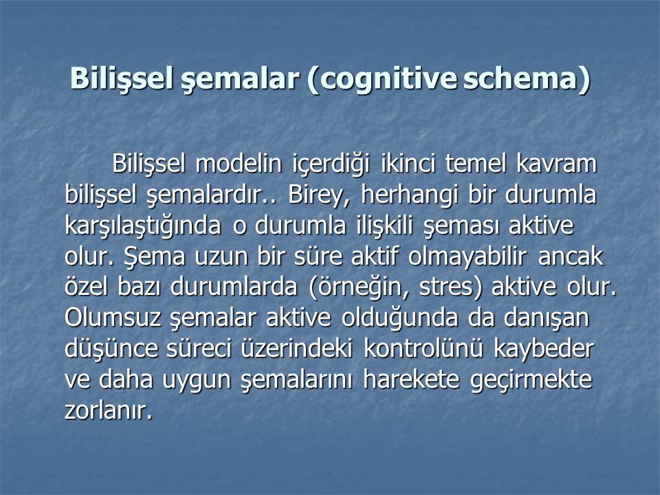 Bilişsel şemalar (cognitive schema)