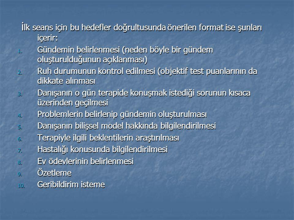 ilk seans için bu hedefler doğrultusunda önerilen format ise şunları içerir: