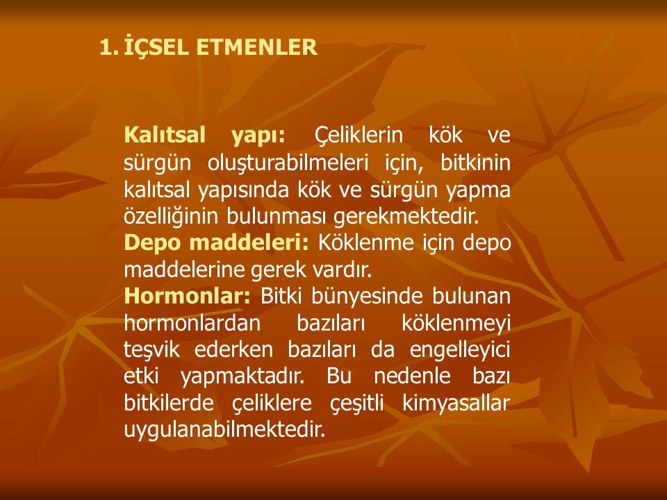 İÇSEL ETMENLER