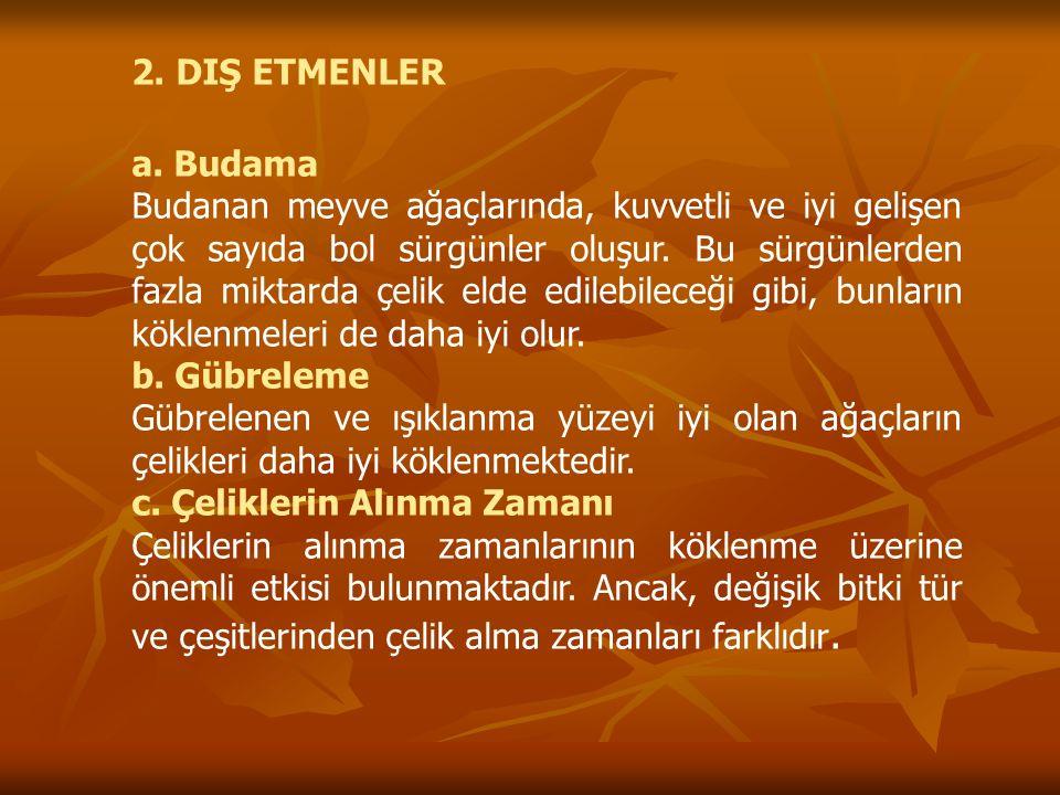 2. DIŞ ETMENLER a. Budama.