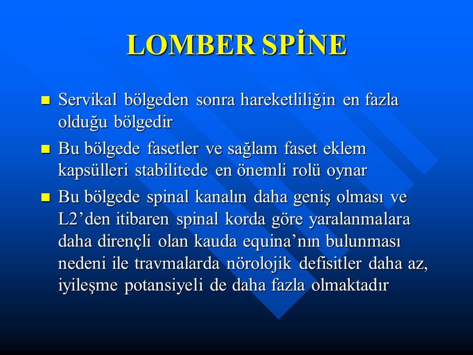 LOMBER SPİNE Servikal bölgeden sonra hareketliliğin en fazla olduğu bölgedir.
