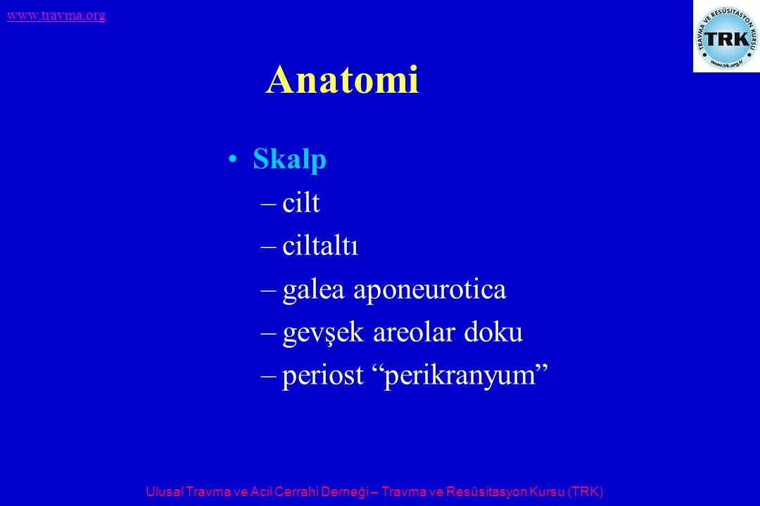 Anatomi Skalp cilt ciltaltı galea aponeurotica gevşek areolar doku