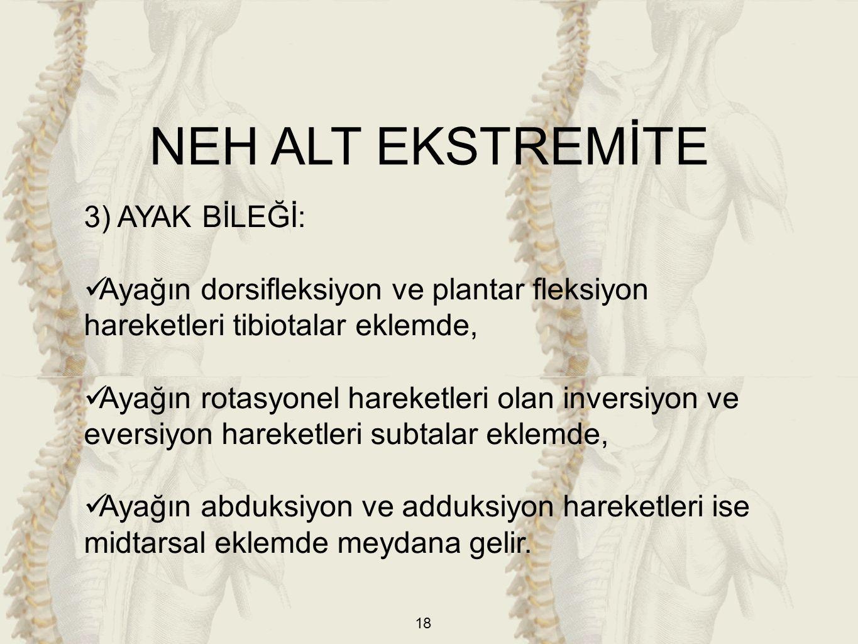 NEH ALT EKSTREMİTE 3) AYAK BİLEĞİ: