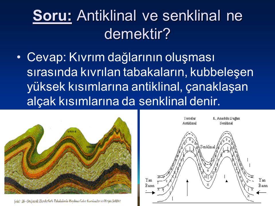 Soru: Antiklinal ve senklinal ne demektir