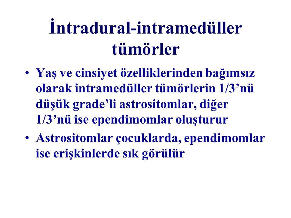 İntradural-intramedüller tümörler