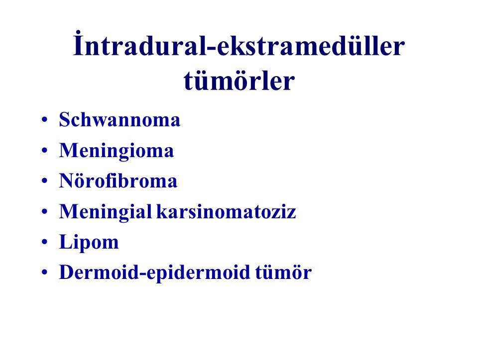 İntradural-ekstramedüller tümörler