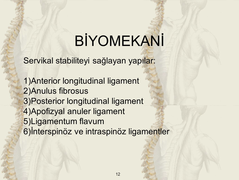 BİYOMEKANİ Servikal stabiliteyi sağlayan yapılar: