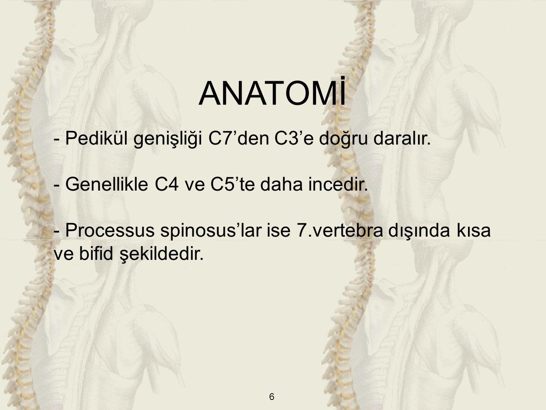 ANATOMİ - Pedikül genişliği C7'den C3'e doğru daralır.