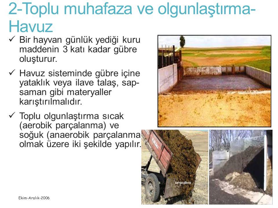 2-Toplu muhafaza ve olgunlaştırma-Havuz
