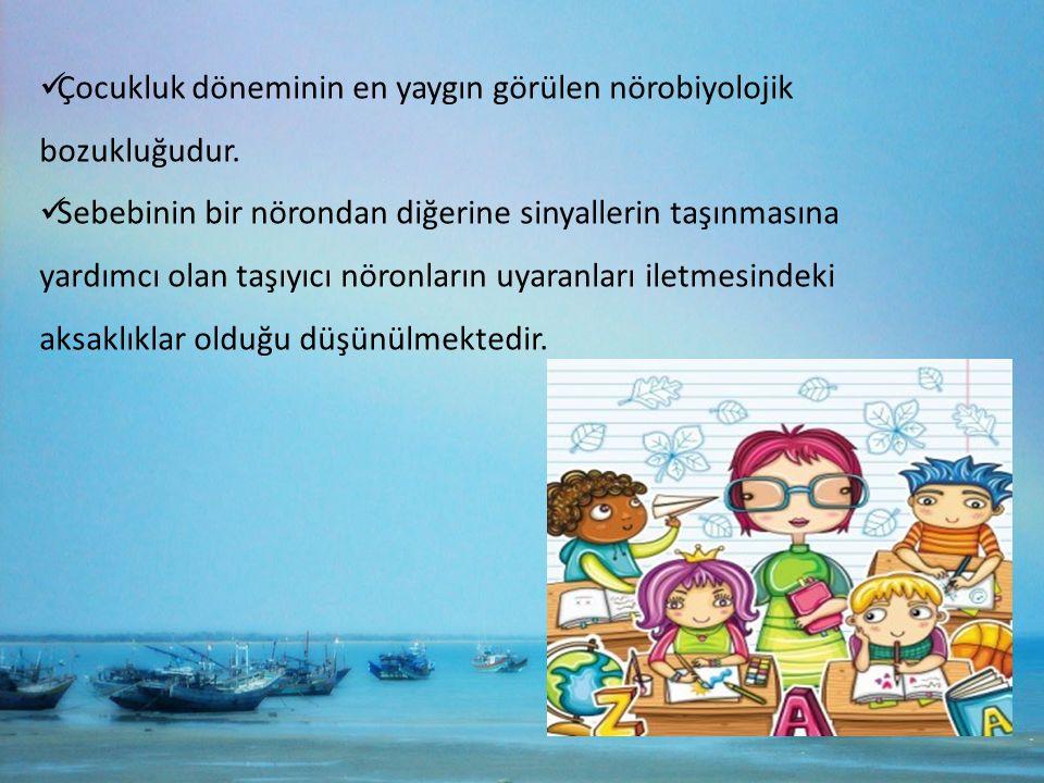 Çocukluk döneminin en yaygın görülen nörobiyolojik bozukluğudur.