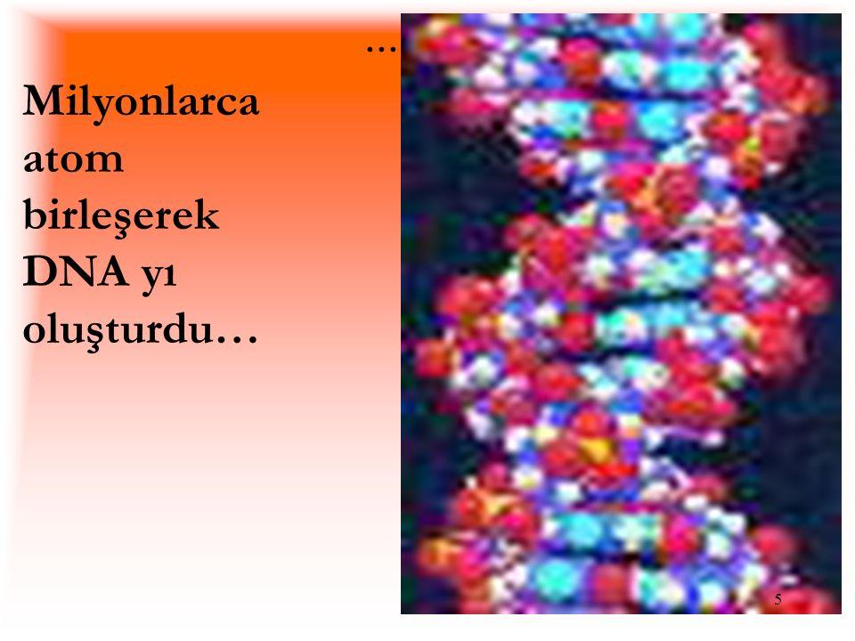 .... Milyonlarca atom birleşerek DNA yı oluşturdu…
