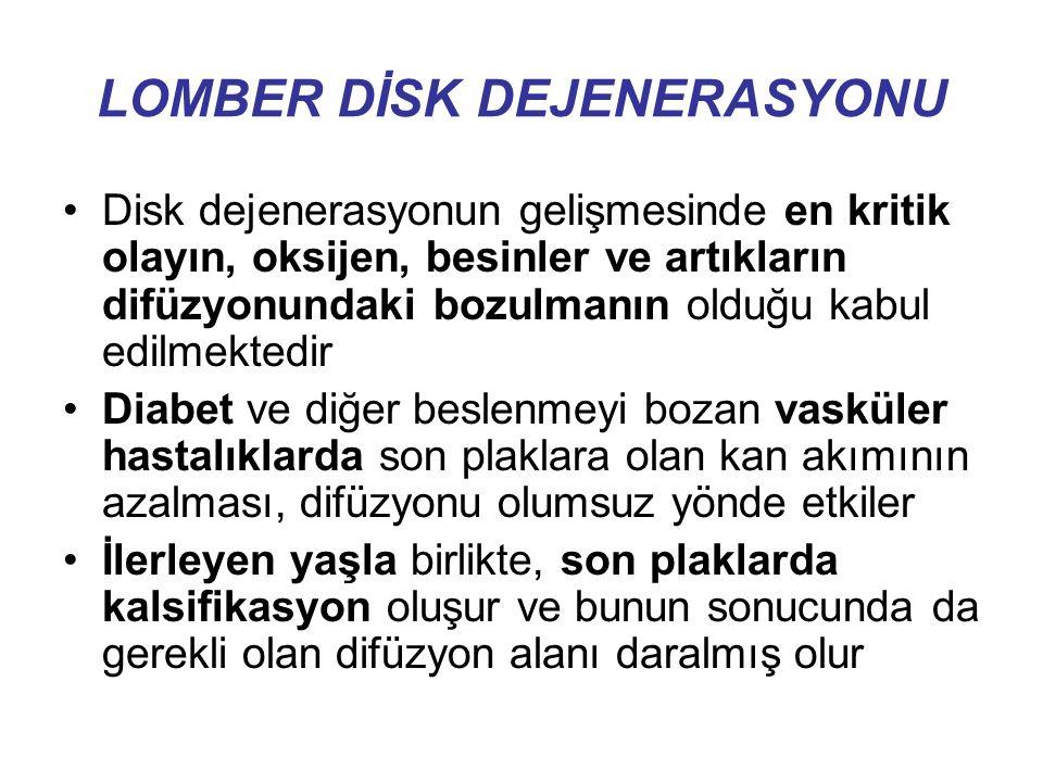 LOMBER DİSK DEJENERASYONU