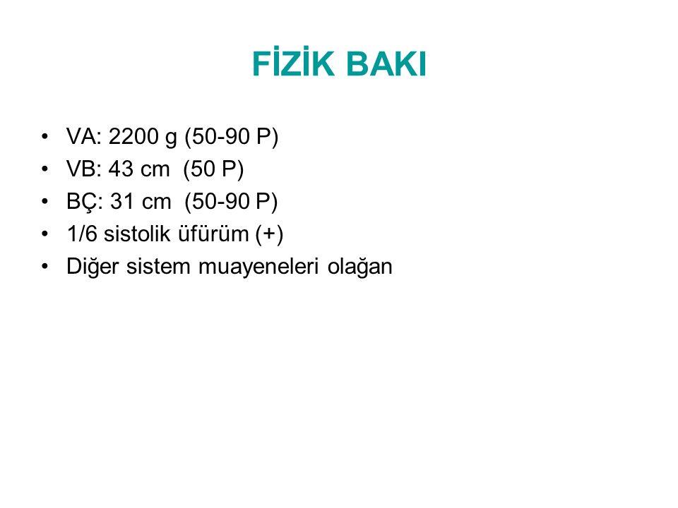 FİZİK BAKI VA: 2200 g (50-90 P) VB: 43 cm (50 P) BÇ: 31 cm (50-90 P)