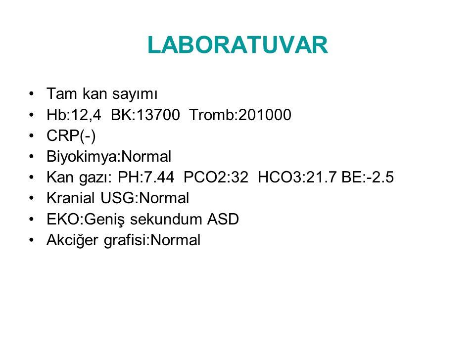 LABORATUVAR Tam kan sayımı Hb:12,4 BK:13700 Tromb:201000 CRP(-)