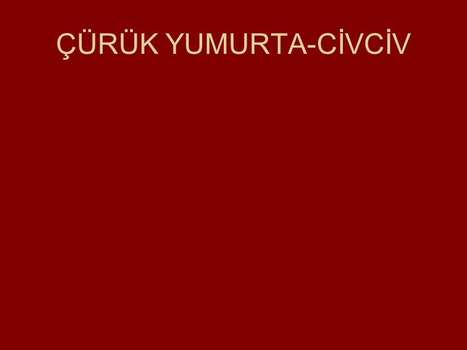 ÇÜRÜK YUMURTA-CİVCİV