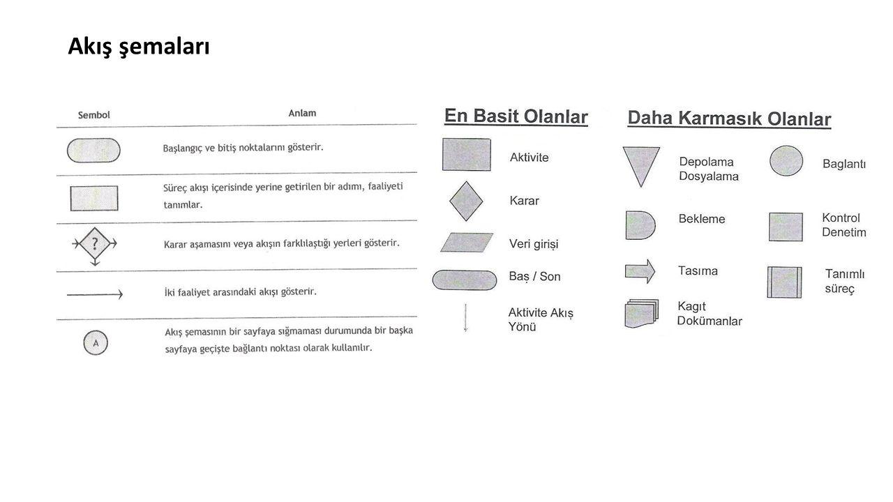 Akış şemaları