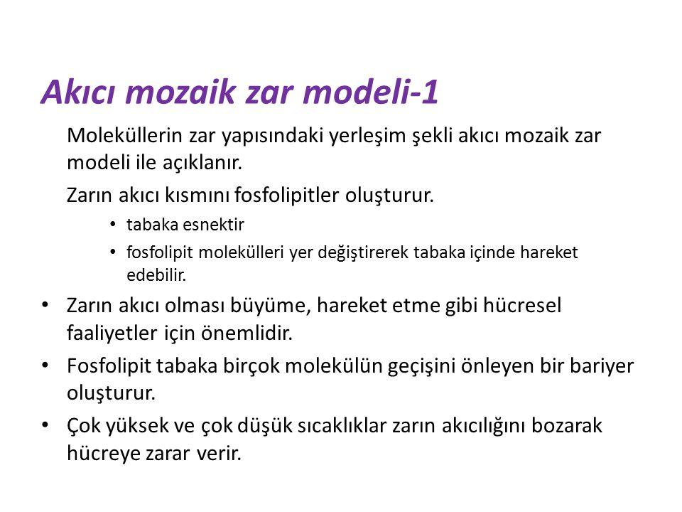 Akıcı mozaik zar modeli-1