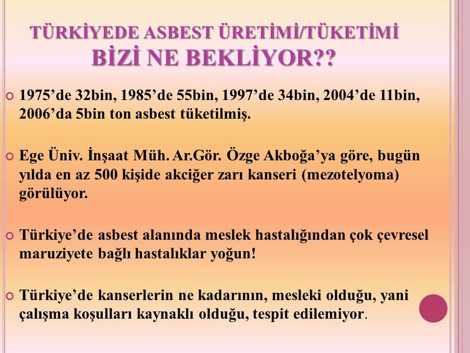 TÜRKİYEDE ASBEST ÜRETİMİ/TÜKETİMİ BİZİ NE BEKLİYOR