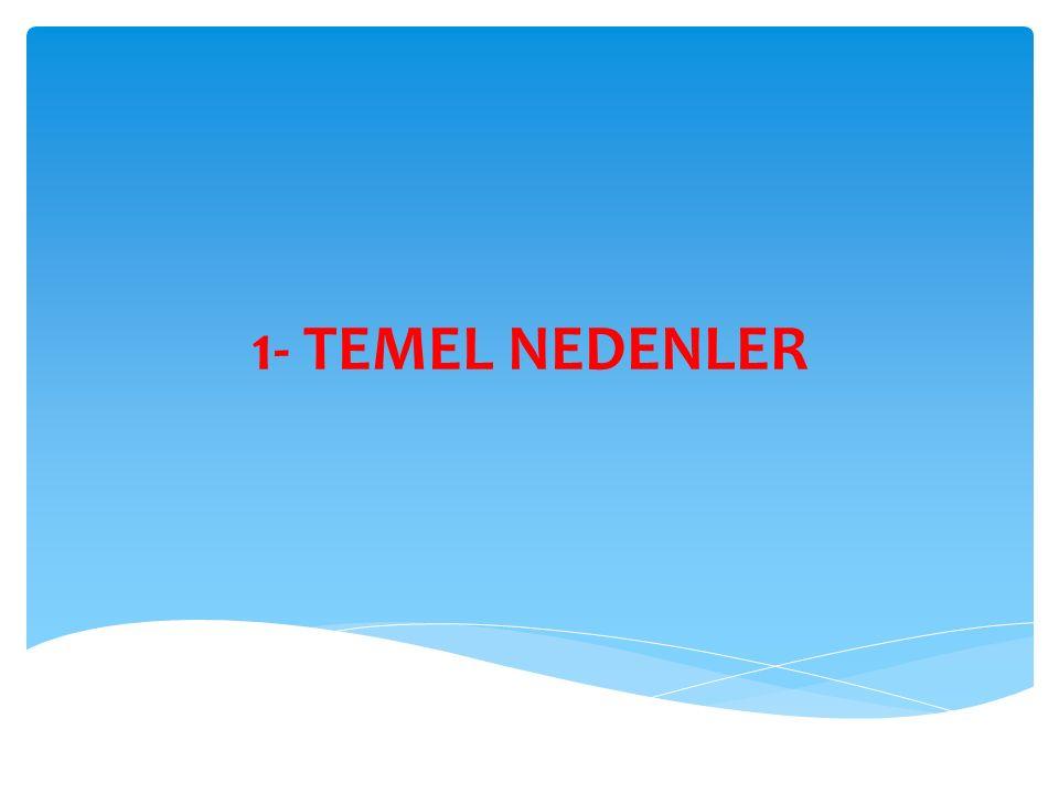 1- TEMEL NEDENLER